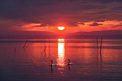 (Galep Iccar) Tags: sunset nature natur landscape lake trasimeno