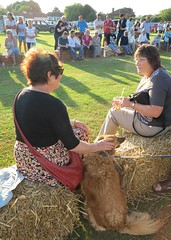 chatting with friend (squeezemonkey) Tags: dog evening countryside shadows village event spectators chatting haybales tetford terrierracing