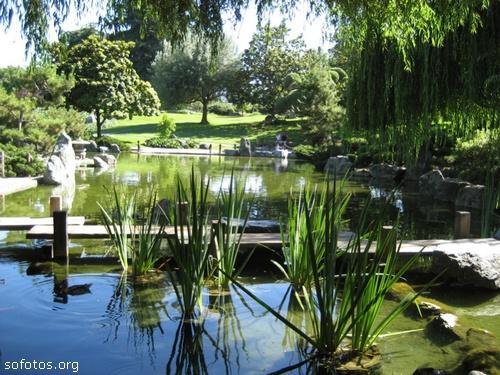 Paisagismo e jardinagem 16