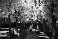 every picture tells a story (greg westfall.) Tags: people paris france cane gardens french europe dress oldman infrared weeks luxembourg fr 52 everypicturetellsastory isledefrance abigfave 830nm gregwestfall gregwestfallphotography