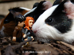 The Dr and Amy encountering new life form the Guinea pig