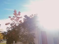 Sunshine on campus (cjazzlee) Tags: kamloops chasinglight originalfilter mytru vscocam uploaded:by=flickrmobile flickriosapp:filter=original