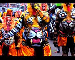 tiger_carnival (Sombrero_Nuevo) Tags: carnival red orange india colour nikon tiger crowd culture sigma fair kerala event trichur trissur 2013 pulikali
