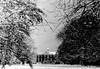 winter in holland (13) (bertknot) Tags: winter denhaag winterinholland