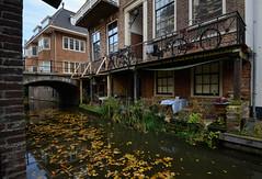 DSC_4412_710 (Julysha) Tags: city autumn october holland thenetherlands canal bikes nikkor1635vr acr utrecht krommenieuwegracht d800e nederland