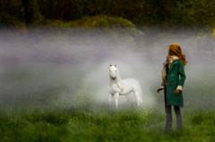 My Not-So-Little Pony: Friendship is Magic (The Katyok) Tags: autumn doll magic hound bjd narin dollphotography narae dollshe bimong