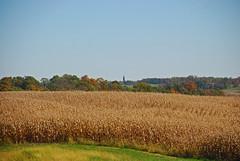 Autum Landscape (thoeflich) Tags: autumn fallcolors autumnleaves autumncolors autumnlandscape