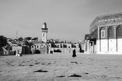 rumore di passi (colimadi) Tags: israel nikon jerusalem alharamalsharif