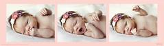 Welcome Ana (Nadia*ND) Tags: life baby cute maternity beb vida newborn bebe dulce maternidad recinnacido