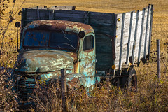 Rusting relic (perspective 3) (Martin Thielmann) Tags: ab barbedwirefence antiquetruck harvestedfield derelicttruck strathconaco latefallcolours rusticinternationaltruckwithwoodplanksides
