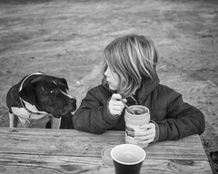 The face off (DWO630) Tags: boy blackandwhite bw food dog monochrome table virginia picnic sigma richmond thermos varina foveon sigmadp2m ballmullofarm