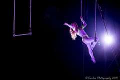 Circus 2014 0175 (KimbroPhotography) Tags: silly circus tiger bb clowns barnum baily ringlingbrothers
