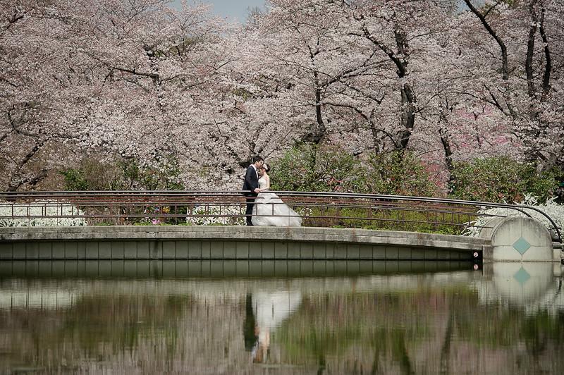 日本婚紗,關西婚紗,京都婚紗,京都植物園婚紗,京都御苑婚紗,清水寺和服,白川夜櫻,海外婚紗,高台寺婚紗,DSC_0030