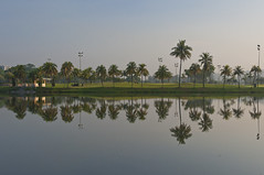 Jurong Country Club (ystan) Tags: lake reflection tree weather club sunrise singapore coconut country jurong ais20mmf28 d700