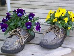 Planter-old shoes_lushome_com (DougBittinger) Tags: