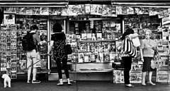 A Day in the Life (B.B.H.70) Tags: newspaper stand kiosko kiosk periódico revista magazine woman grandma man dog perro mujer hombre iphone poodle caniche casa diez bolso handbag mochila postcard madrid vieja elder old marca football fútbol realmadrid atléticodemadrid mundial worldcup barcelona spain dailymail dailyteleghraph time times eveningstandard news noticias