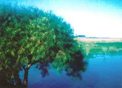 (Lolita Storm) Tags: naturaleza film nature landscape photography photo minolta 110 mm analogica analogic
