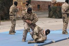 IMG_5301 (sbretzke) Tags: army uniform zb bundeswehr closecombat nahkampf 20140615