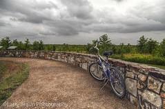 Under the Clouds (LarryHB) Tags: park rural illinois trail roadart 2014 tunnelhill