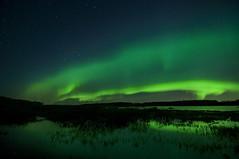 Going green (Len Langevin) Tags: highiso night sky reflection water lake alberta canada nikon d300s tokina 1116 auroraborealis longexposure