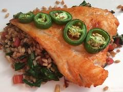Cod w/gochujang, jalapeo, chard, farro (htomren) Tags: phonepics food fish cod