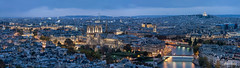 Paris overlook (brenac photography) Tags: brenac d810 france nikond810 brenacphotography nikon wow paris fr panorama hdr oloneo