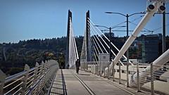 Bike path Tilicum Crossing bridge 10 11 2016 (rbdal (Rick Dalrymple)) Tags: tilikumcrossing tilikumcrossingbridge marquamhill bridge willametteriver portland multnomahcounty oregon d7000 nikon fall october