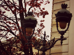 Happy Fall (Little Queen Gaou) Tags: fall automne inspiration automnal paris lanterne garden jardin parc photography