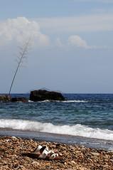 due passi. (LucaBertolotti) Tags: isoladelba elba calaseregola sea water mare riomarina toscana italia isola island summer