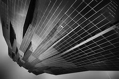 ..high up... (*ines_maria) Tags: monochrome mono blancetnoire blackandwhite bw lookup vienna wien panasonicdmcgx8 dctower viennainternationalcity vic austria architecture danubecity skyscraper flipped architektur dominiqueperrault 60storyskyscraper