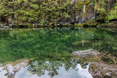 Green Mirror (Alison Claire~) Tags: volcnosorno petrohu chile southamerica saltosdepetrohu puertovaras outdoor outdoors south america nature natural wild wilderness water waterscape lake river green canon canoneos canoneos600d eos eos600d 600d rebel rebelt3i rebelt31 day digital hiking hike trek trekking cliff cliffs erossion eroded gorge still reflections reflection reflective