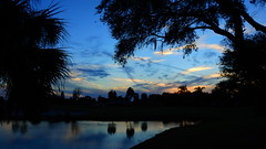 October Sunset at the Duck Pond (Jim Mullhaupt) Tags: sunset sundown dusk sun evening endofday sky clouds color red gold orange pink yellow blue tree palm outdoor silhouette weather tropical exotic wallpaper landscape nikon coolpix p900 pond lake water reflection manateecounty bradenton florida jimmullhaupt cloudsstormssunsetssunrises ducks duck mallard bird swamp wildlife nature background photo flickr geographic picture pictures camera snapshot photography nikoncoolpixp900 nikonp900 coolpixp900
