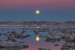 Super Moon Reflection (Jeffrey Sullivan) Tags: monolake super moon rise astrophotography night landscape travel photography reflection california usa nature canon eos 6d photo copyright november 2016 jeff sullivan cokin weather beltofvenus