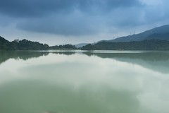 DSC04755 (rickytanghkg) Tags: hongkong sonya7ii sony a7ii a7m2 nature