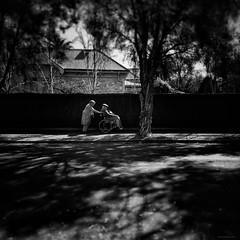 Everyday #Adelaide No. 377 (michelle-robinson.com) Tags: michellerobinson michmutters adelaide southaustralia australia artist photographer streetphotographer streetphotography streetlife blackandwhitephotography bw 4tografie flickrelite couple elderly love trees shade shadows candid everydayaustralia everydayadelaide everydayeverywhere iphoneography iphonephoto iphone6plus shotoniphone mobilephotography smartphonephotography
