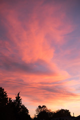 Clouds at Sunset (samfeinstein) Tags: nikon d750 2470 vr clouds sunset pinkclouds pink sky sooc nophotoshop