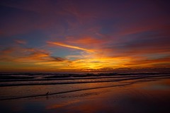 NSB Sunrise ( ‎October ‎25, ‎2016,) (TaranRampersad) Tags: newsmyrnabeach nsb beach sunrise sunset sun oceanside seaside outside hdr ocean sea atlantic landscape