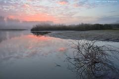 Misty morning (Hector Prada) Tags: amanecer otoño niebla nikon nubes vitoria lago reflejos sunrise autumn fog clouds lake humedal mist