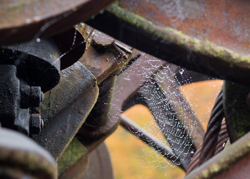 rust and cobwebs 03 oct 16