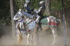 IMG_4758 (joyannmadd) Tags: horse rider joust spar duel warhorse hammoind louisiana armour outdoor game war combat midevil larenfest