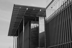 Modern Wing (Tim Roper) Tags: chicago art institute renzo plano