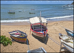 (wilphid) Tags: salvador bahia brésil brasil riovermelho iemanja océan atlantique rivage mer pêcheurs