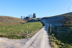 Guggisberg (o_schopfer) Tags: chemin montagnes mountains path riedsttt bern suisse ch