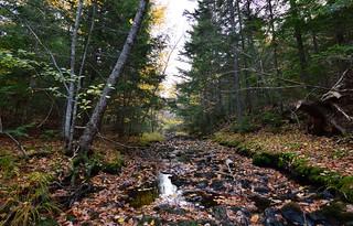Lepper Brook