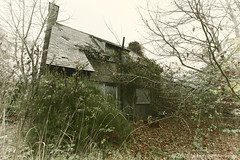 The Railway Cottage (modulationmike) Tags: abandoned house cottage overgrown ruins somerset nikon fardens