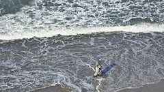 Fort Funston Man with Net Walks Beach (Lynn Friedman) Tags: sport fishing net beach one man ocean pacific searching 94118
