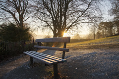 DSC_2466 (Mark Dunscombe2011) Tags: bathabbey alexandrapark cold mistymorning firstlight