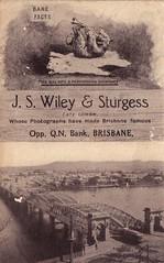 Advertisement for J.S.Wiley & Sturgess, Photographers in Queen Street, Brisbane, Qld - circa 1905 (Aussie~mobs) Tags: brisbane queenstreet queensland australia advertisement vintage photographers photographicstudio jswileysturgess