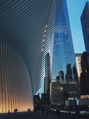 wtc and the oculus. (howard-f) Tags: nyc newyorkcity cityscape urban urbanphotography iphone iphoneography thebigapple vsco vscoam iphone6plus manhattan urbanphotographer lowermanhattan tribeca 1wtc freedomtower oneworldtradecenter skyline giantbuildings buildingup framed oculus worldtradecentertransportationhub architecture architecturalphotography sunsetnyc ribs steel