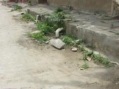 Lagoa Seca - Esgotamento sanitário precário